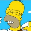 The Simpsons Homer .. Image